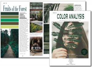The magazine includes a seasonal colour palette selected from a wide range of approximately 3,700 CSI ColorWall colours.