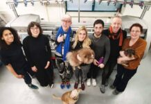 Creative team and furry friends at the Netherlands' Knitwear Lab. © Knitwear Lab.