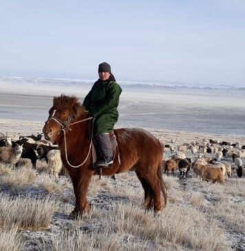 The program will give over 1000 women herders access to programs to help grow their individual businesses and take important leadership positions in their communities. © The Sustainable Fibre Alliance