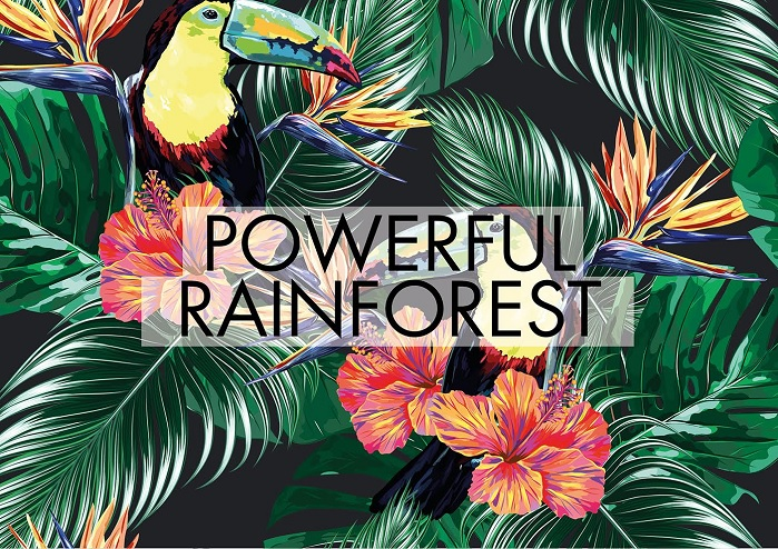 Powerful Rainforest theme. © Mare d'Amare