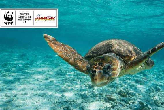 The Mediterranean Initiative by WWF Italia aims to protect the Mediterranean Sea. © Eurojersey